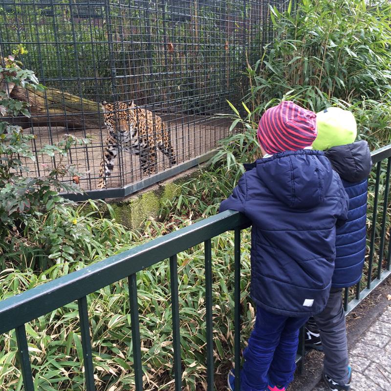 zoo_hauptstadtmutti_04